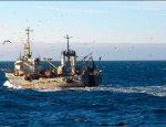 Ловись рыбка: рыболовство в Крыму получит исключительные места