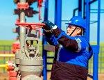 Новая нефтехимия: теория эволюции