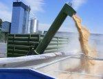 Из-за потери Крыма в Украине осваивают новые методы перевалки зерна