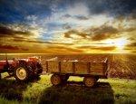 Российская экспансия мирового рынка сельского хозяйства