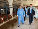 Экспериментальная энергетика: биогаз обогреет киевлян холодной зимой