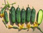Два года замещения: Казахстан в десятки раз увеличил импорт овощей и фрукто