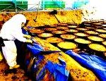 Гибель по-киевски: Украина скоро утонет в ядерных отходах