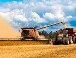 Рекордный урожай - 2016: Россия заработает на зерне больше СССР