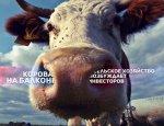 «Корова на балконе» возбуждает инвесторов. Уникальный проект России