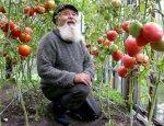 Сельский прорыв: чего у нас ему сегодня не хватает?