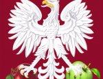 Россия попала в яблочко! Польша на грани «сердечного приступа»