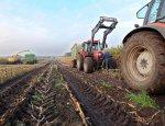Фермеры России к экспорту готовы, но за границей их не ждут