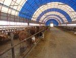 Украина четыре года строит уникальную ферму за 11 млн