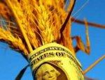 Санкционная петля США: Китай заявил о миллиардом вкладе в зерновые России