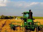 Европейская мечта: литовские фермеры запрягли украинских крестьян