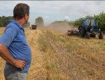 Румыния подставила украинских аграриев