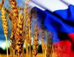 Россия установила рекорд: Больше нужны в зерновых нет