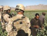 Наркотрафик и торговля органами. Неприкрытый доход США в Афганистане
