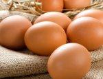 Яйцо в Украине подорожает на 300 процентов