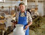 Фермеров становится меньше, а оптимизма у властей - больше