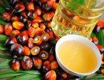 Агроновости: не бойтесь пальмового масла