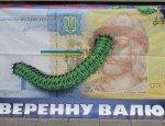 Тысяча и одна облигация и другие серые схемы вывода денег с Украины