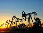 Минэнерго США поднимает цену на «черное золото»