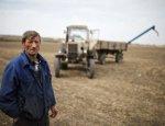 Фермеры против агрохолдингов: кто на самом деле кормит страну