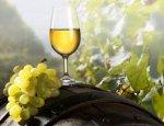 Guardian: санкции помогают крымским виноделам