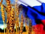 Россия готова стать мировым лидером по производству чистой сельхозпродукции