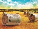 Урок политэкономии на кромке поля