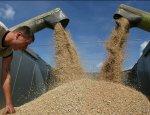 Les Echos: Русский урожай открывает прекрасные перспективы