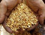 Золотодобыча в России на подъеме: успех достигнут благодаря удивительным инновациям