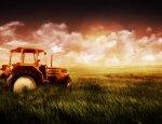 Вместо встречи с Путиным фермеры получили по 10 суток ареста