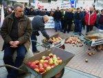Польские фермеры проклинают обильный урожай яблок