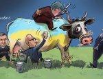 Чья бы корова мычала: Украине некуда продавать свое мясо