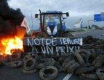 Антироссийские санкции доводят французских фермеров до самоубийства