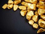 В России начнут разрабатывать крупнейшее месторождение золота