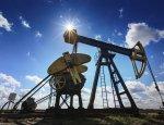 Белорусы решили найти альтернативу российской нефти