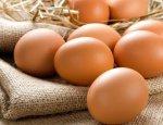 «Достижение» Евромайдана: В 2016 году экспорт украинских яиц упал в 3 раза