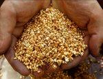 Золотой запас России: на Крайнем Севере в разы увеличат добычу драгметалла