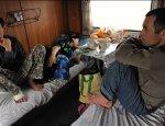Как цивилизовать трудовую миграцию в Россию из Узбекистана