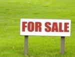 Сначала поимеои белорусов, а теперь готовы продать земли китайцам