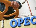 ОПЕК выводит «тяжелую артиллерию» на битву за рост цен на нефть