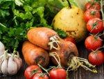 Цены на новый урожай овощей в Украине побили все рекорды