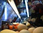 Русская еда: как продэмбарго наполнило прилавки магазинов «своими» товарами