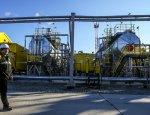 Нефтегазовые компании РФ нужно пустить с молотка