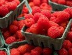 На Украине ожидается беспрецедентное повышение стоимости малины