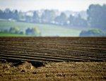 Украина в ловушке Запада: распродажа земли пройдет по дешёвке