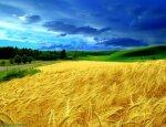 Грядет колоссальная драка за украинскую землю