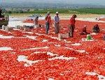 Беларусь: турецкий помидорный офшор