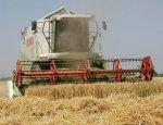 Кто выйдет победителем из «зерновой войны» России и США
