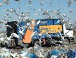 Деньги не пахнут:предприниматели выстроились в очередь за львовским мусором