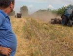 Украинские аграрии пролетают мимо европейского рынка